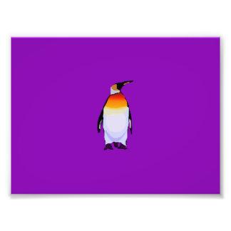 Penguin Purple Art Photo