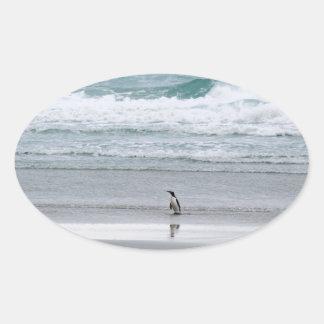 Penguin returning from the ocean oval sticker