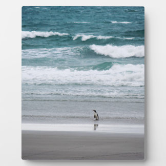 Penguin returning from the ocean plaque