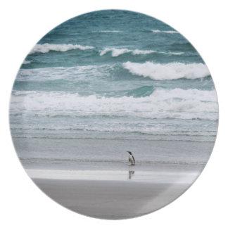 Penguin returning from the ocean plate