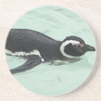 Penguin Swimming Coaster