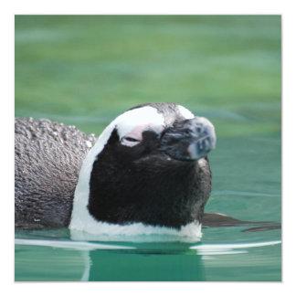 Penguin Swimming Invite