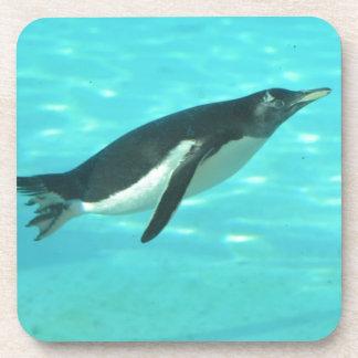 Penguin Swimming Underwater Coaster
