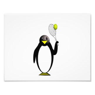 Penguin Tennis Photographic Print