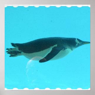 Penguin Underwater Print