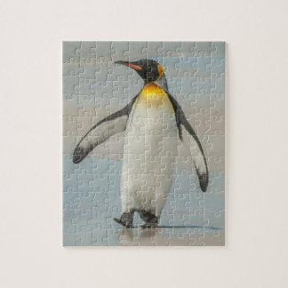 Penguin walking on the beach puzzle