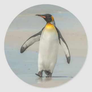 Penguin walking on the beach round sticker
