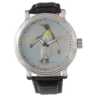 Penguin walking on the beach watch