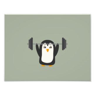 Penguin Weightlifting Art Photo
