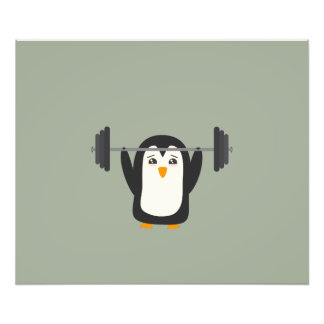 Penguin Weightlifting Photo