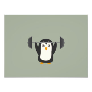 Penguin Weightlifting Photographic Print