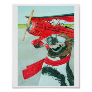 Penguin with a Plane Poster