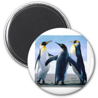 Penguins 2 Inch Round Magnet