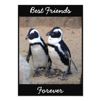 "Penguins 5"" X 7"" Invitation Card"
