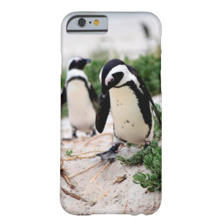 Penguins at the beach barely there iPhone 6 case