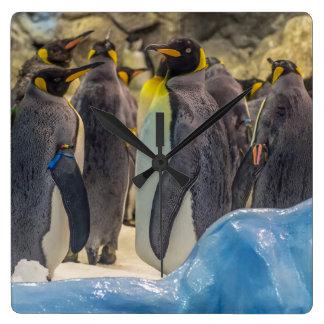 Penguins at the zoo square wall clock