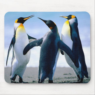 Penguins: Colorful Penguin Mousepad or Mouse Pad