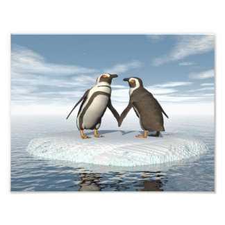 Penguins couple art photo