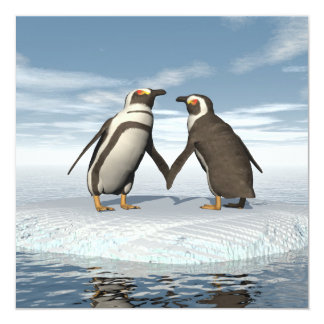 Penguins couple card