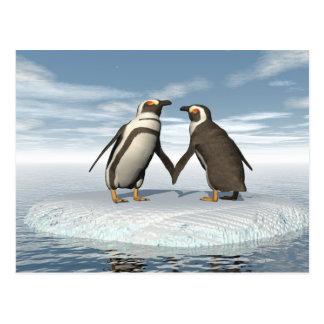Penguins couple postcard