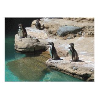 Penguins Invitations