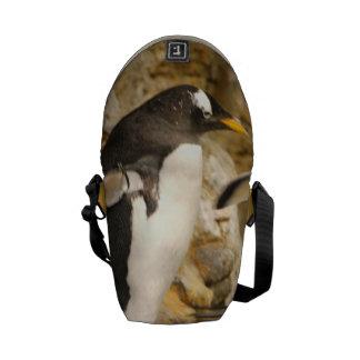 Penguins Courier Bags