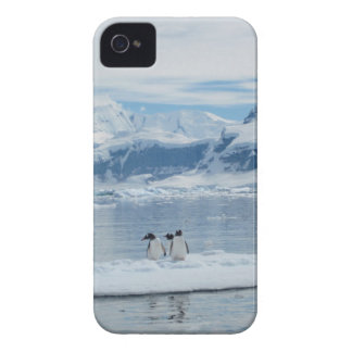 Penguins on an iceberg Case-Mate iPhone 4 case