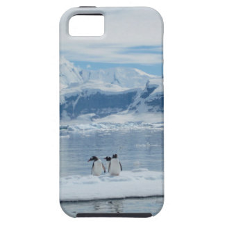 Penguins on an iceberg iPhone 5 cases