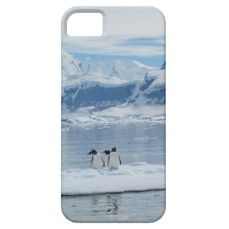 Penguins on an iceberg iPhone 5 cover