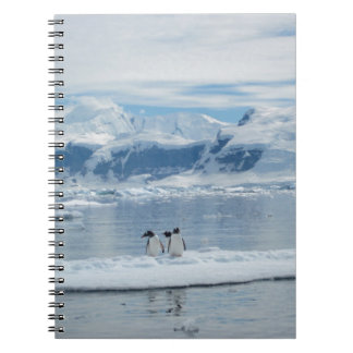 Penguins on an iceberg note book