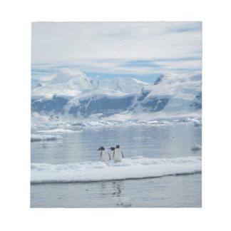 Penguins on an iceberg notepad