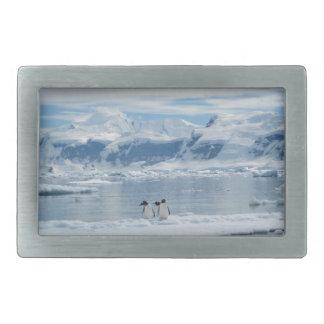 Penguins on an iceberg rectangular belt buckles
