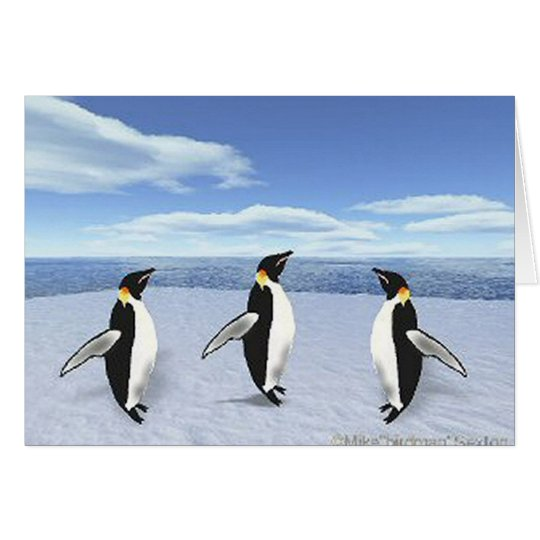 Penguins on Ice Cards