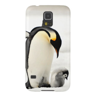 penguins photo samsung galaxy S5 case