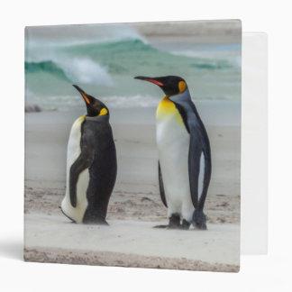 Penguins preening on beach binders