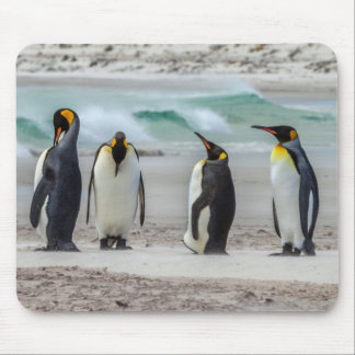 Penguins preening on beach mouse pad