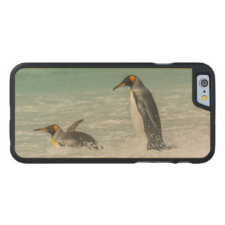 Penguins swimming on the beach carved® maple iPhone 6 case