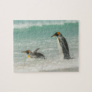 Penguins swimming on the beach jigsaw puzzle
