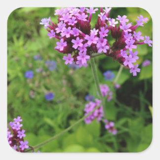Penland Purple Flower: Sallie by My Side Square Sticker