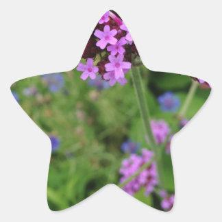 Penland Purple Flower: Sallie by My Side Star Sticker