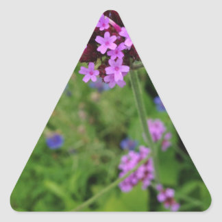 Penland Purple Flower: Sallie by My Side Triangle Sticker