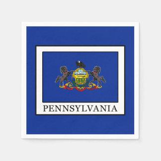 Pennsylvania Disposable Napkins