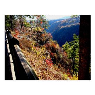 Pennsylvania Grand Canyon - Colton Point Postcard