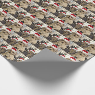 Penny and Copper Christmas Wrapping Paper