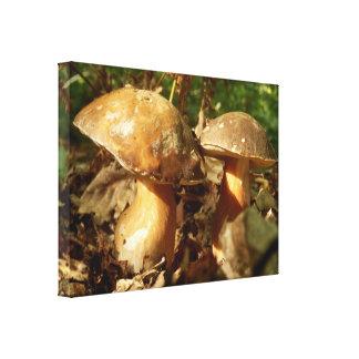 Penny Bun Mushroom Canvas Print