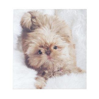 Penny orange liver Shih Tzu puppy note pad paper