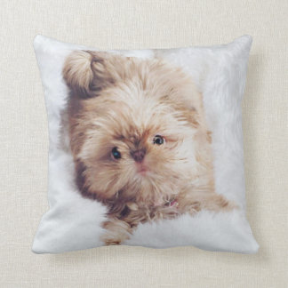 Penny the orange liver Shih Tzu puppy throw pillow