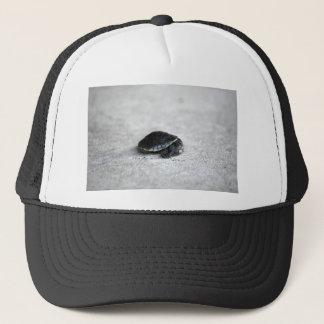 PENNY TURTLE QUEENSLAND AUSTRALIA TRUCKER HAT