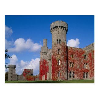 Penrhyn Castle, Gwynedd, Wales 3 Postcard