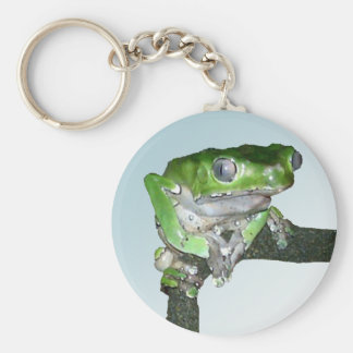 Pensive giant waxy monkey tree frog basic round button keychain